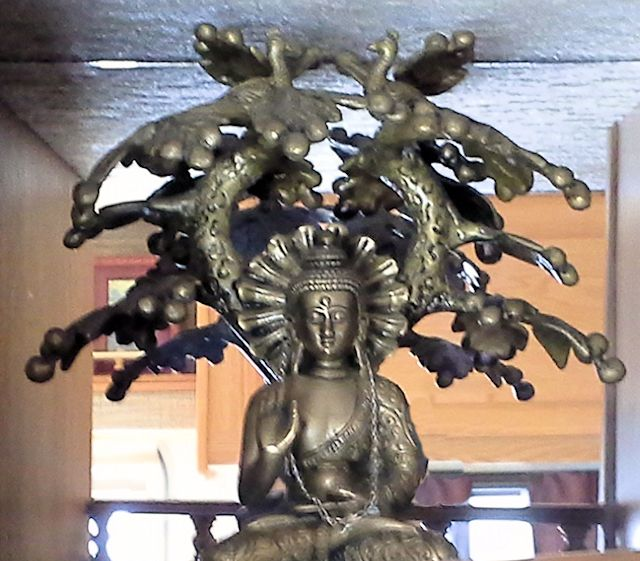 Buddha tree.jpg