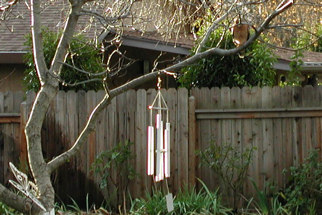 Wind chimes & hawk, CA