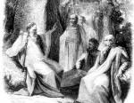 A Druid Group Comparison Table