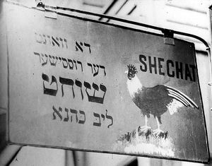 Shechat butcher sign, Toronto, Canada c. 1910